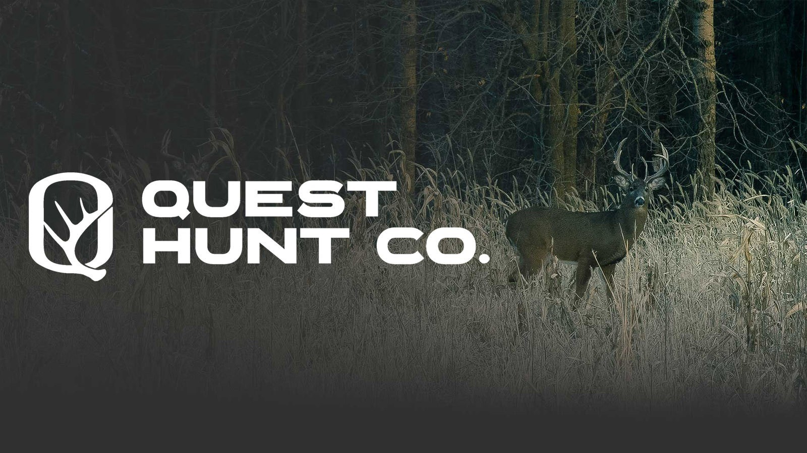 Sponsorship: Quest Hunt Co. Tournament